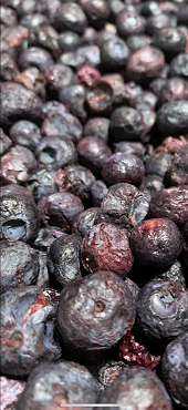 Freeze Dried Wild Blueberries