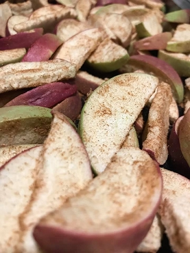 Freeze Dried Spiced Apple Slices